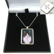 Pet Loss Photo Necklace on Sterling Silver Chain